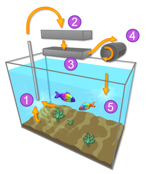 Fish tank filter how does it work on fish tank filter for Fish tank filter not working