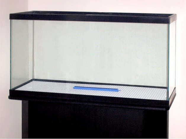 Empty fish tank - photo#4